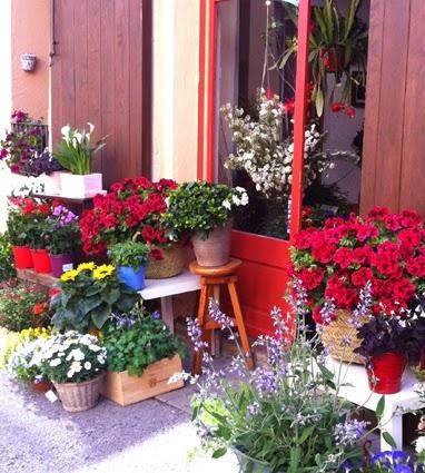 """183 Art floral per Sant Jordi - Celi Comas """"Verd és bo"""""""