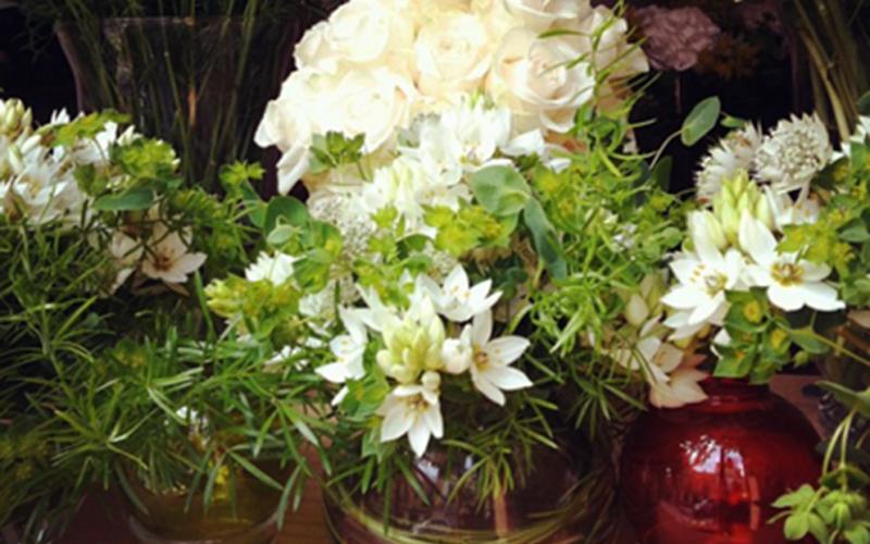 """Art floral per Sant Jordi – Celi Comas """"Verd és bo"""""""