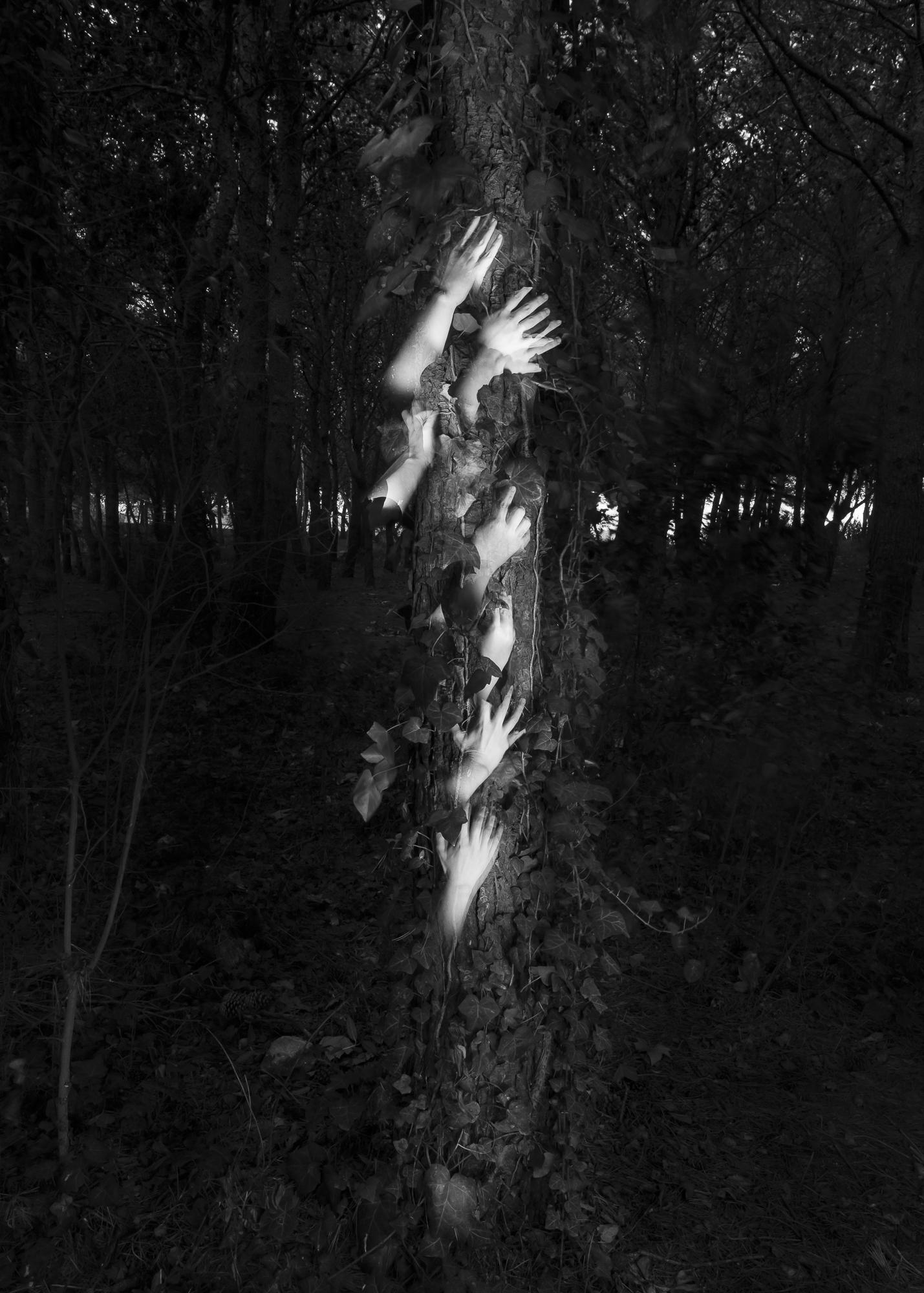 SERIE.-Deconstructivismes_-titol-43__fotografia-llarga-exposició_-20x30cms_150€-ed1_3 Raúl Guillamón