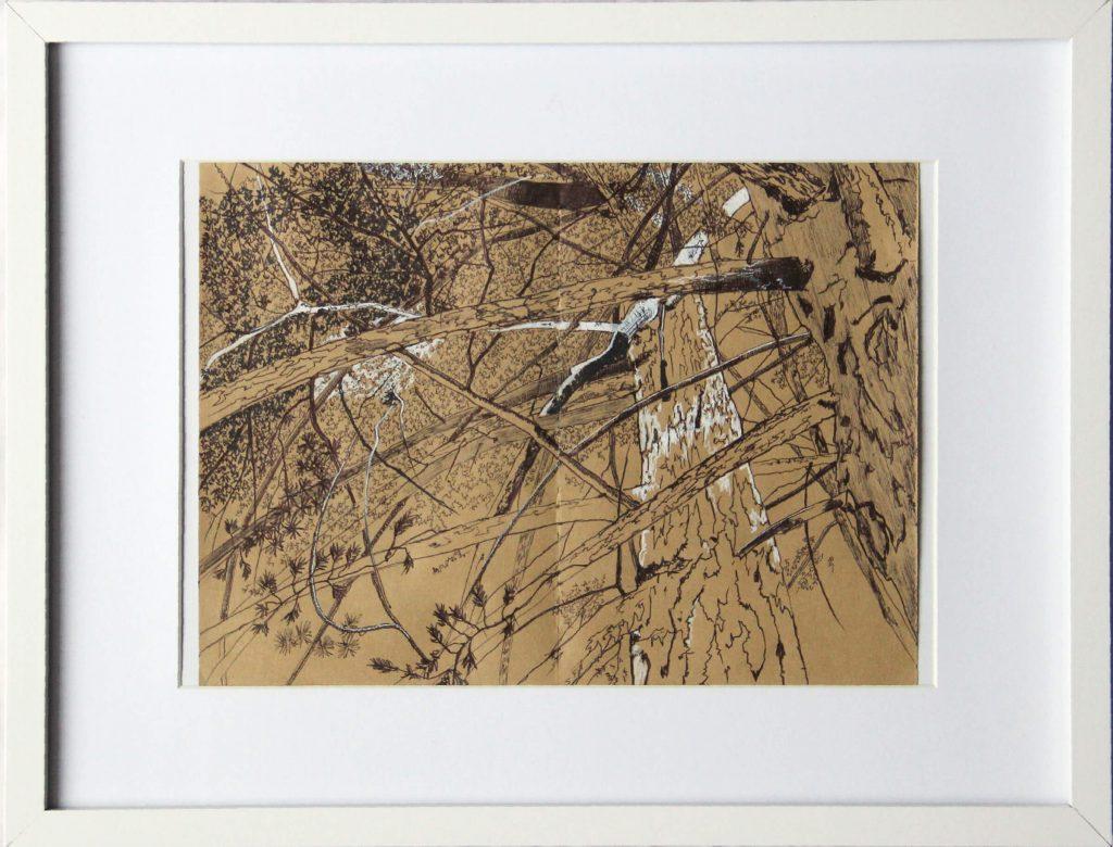 600€-Alló-que-amaguen-els-arbres-VII-40X30cm-dibuix-d-paper-IMG_0068-1024x780 Tatiana Blanqué - Epidermis pictòrica
