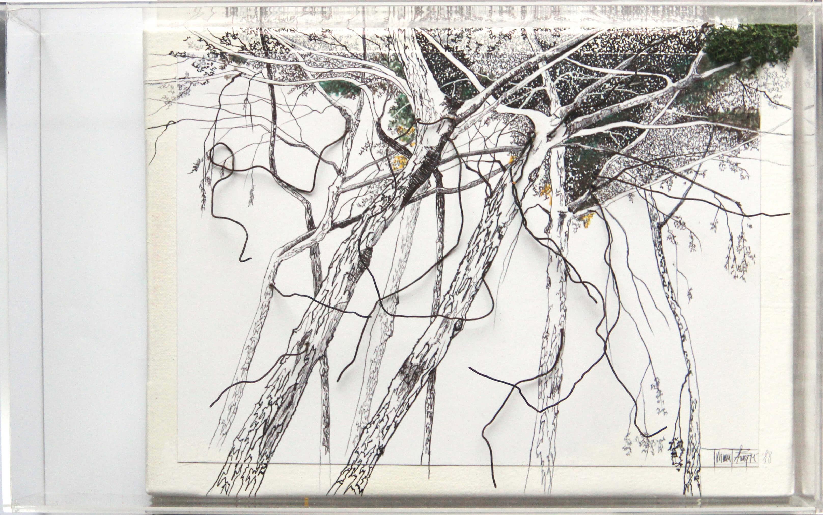 725euros-Alló-que-amaguen-els-arbres-VIII-40x25cm-tècnica-mixta-d-paper-i-capsa-metacrilat-IMG_0070 Tatiana Blanqué