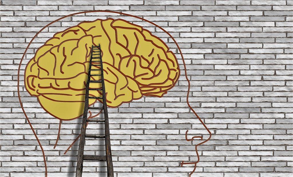 La-Neurociencia-aplicada-a-la-Mediación-1-1024x618 Art, Neurociència i Educació