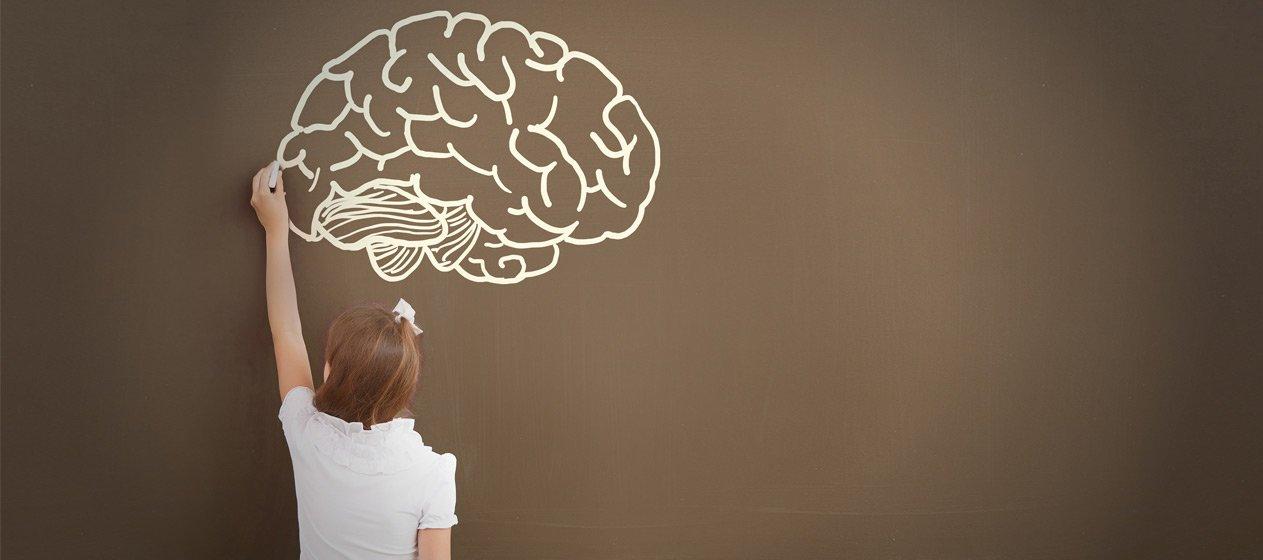 Art, Neurociència i Educació